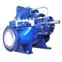 Delium Double-Entry Pumps